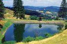 Tajchy of Banska Stiavnica