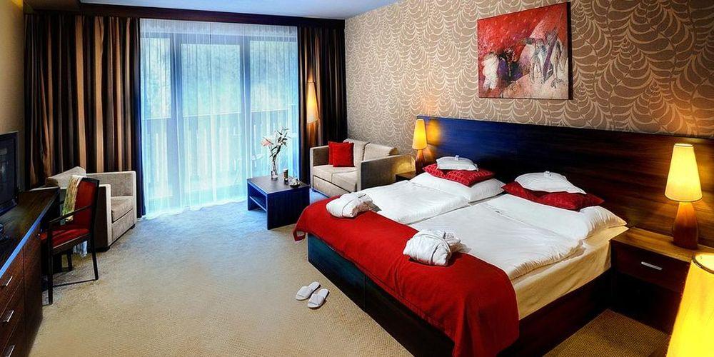 Plesnivec Double room - Oтель Хопок / Hotel Chopok