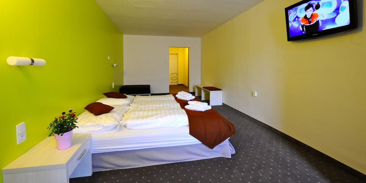 Standard Room - Hotel Ostredok