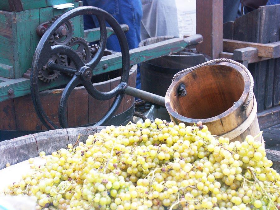 Carpathian Wine