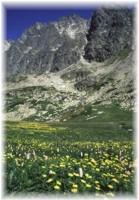 Sommer in Hohe Tatra