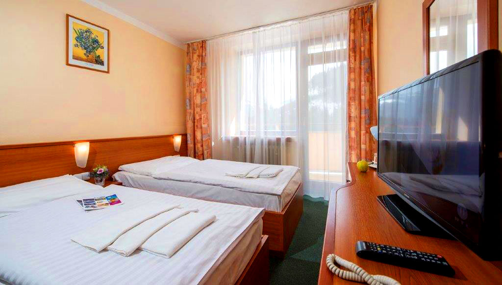 Twin room - Hotel Sorea SNP