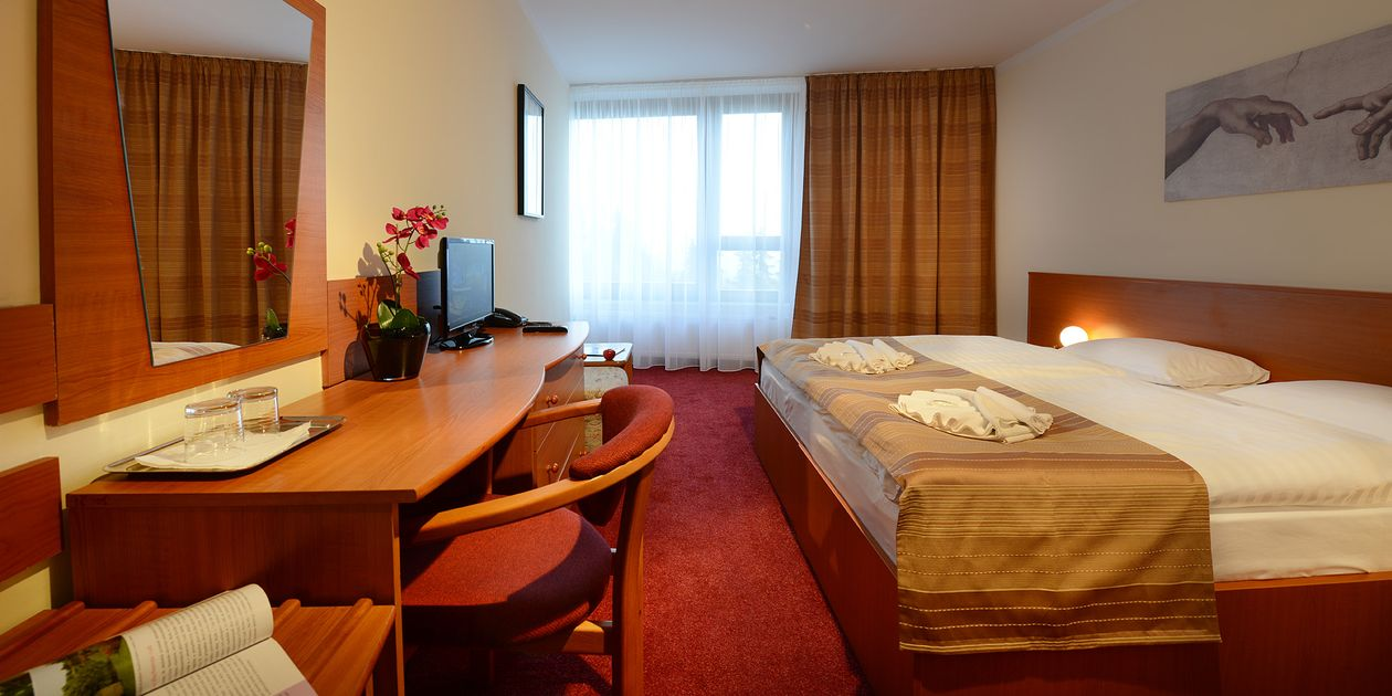 Double Room - Отель Copea Триган / Hotel Sorea Trigan