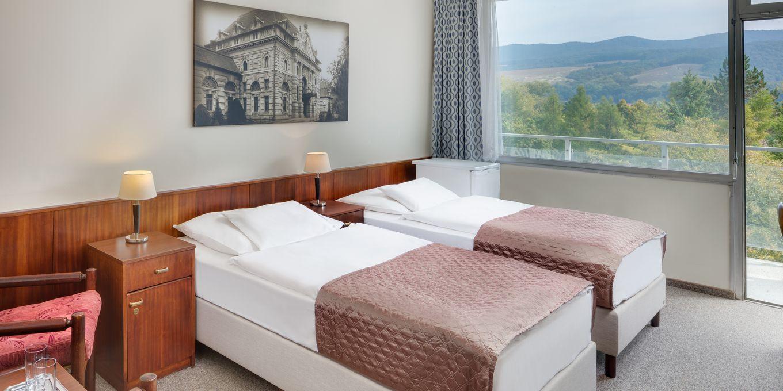 Standard room - Splendid Ensana Health Spa Hotel