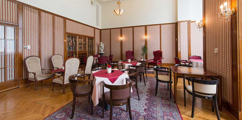 Ferdinand lounge - Thermia Palace Ensana Health Spa Hotel