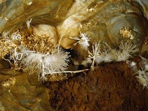 Ochtinska Aragonitova Jaskyna