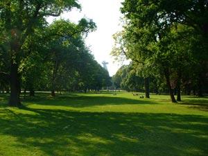 Janko Kráľ Garden