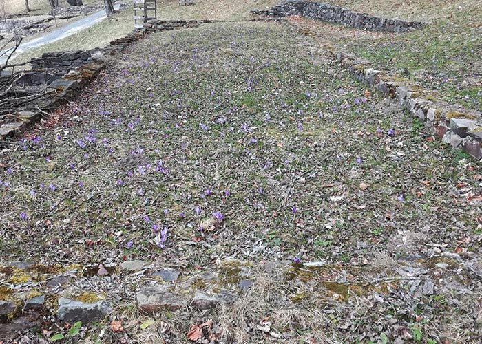 Kaliste Spring
