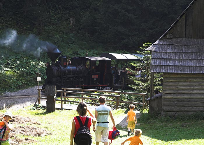 Vychylovka train tours Slovakia